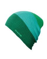 DAKINE Lester (green)